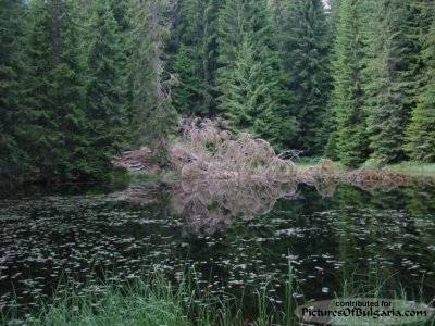 The Smolyan Lakes - Pictures Of Bulgaria
